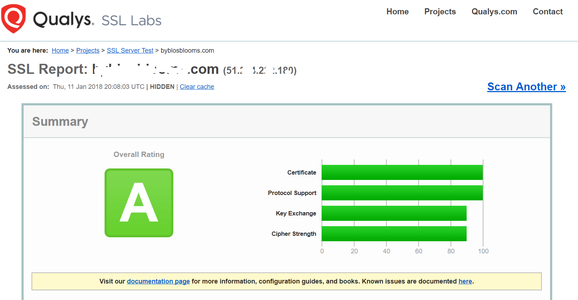 Testing the Strength of Your SSL Service