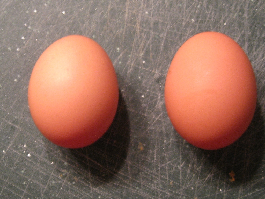Picture of Add Eggs