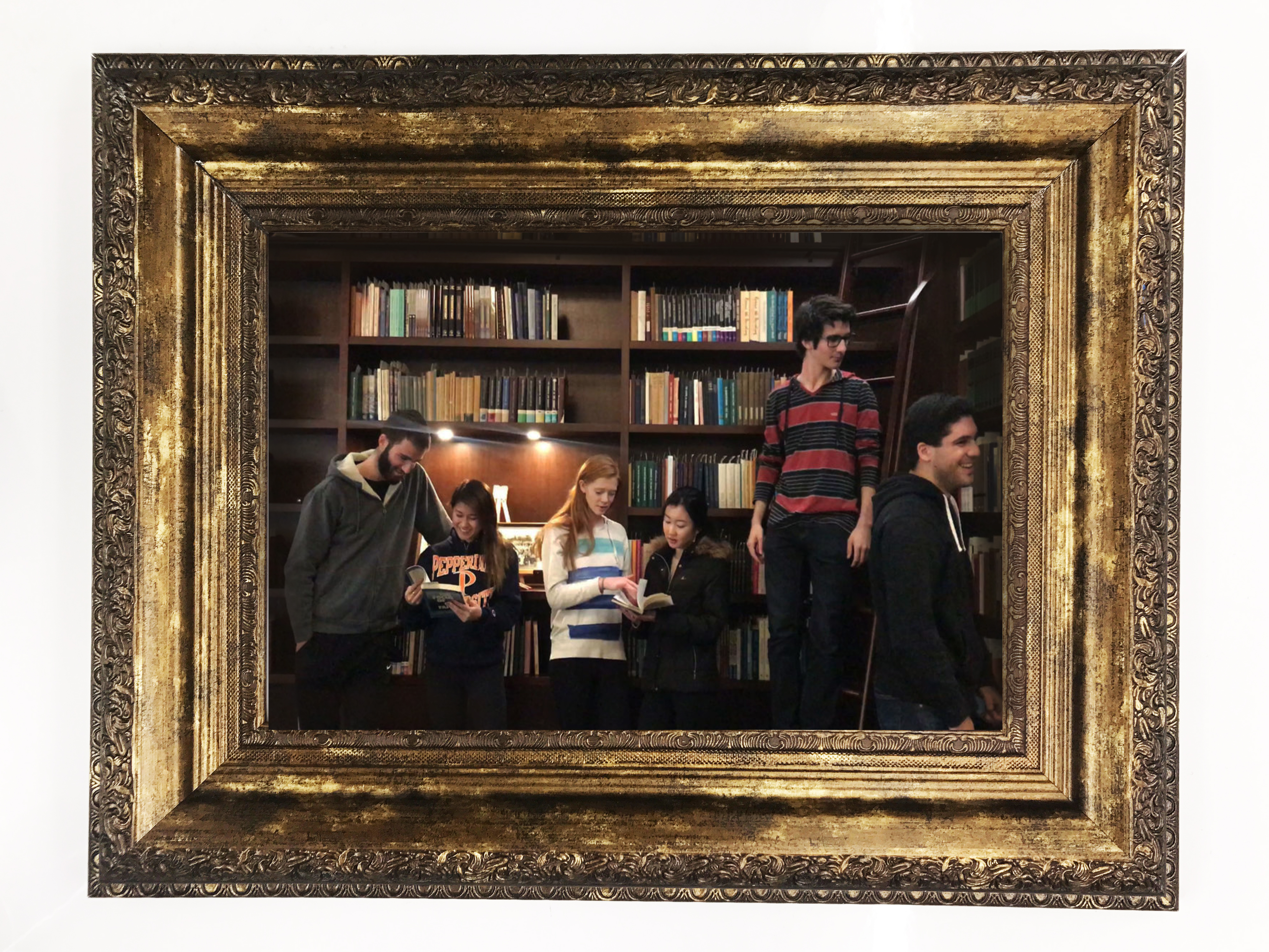 Picture of DIY Harry Potter Moving Portrait Project
