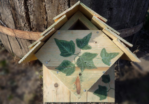 DIY Repurposed Wood Bird Box for Blue Tits & Coal Tits. Easy to Make for Those Who Have No Access to Large Drills. Nichoir Pour M�sanges. Nido Para Aves, Palets Reciclados