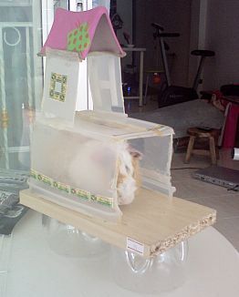 Picture of Hamster & Guinea Pig's Bedroom (castle Rarther)
