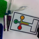 Paper Microfluidic Devices
