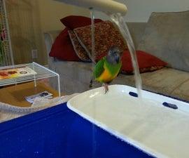Bird Splash Pad