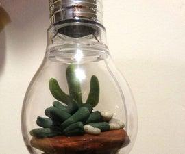 Hanging Lightbulb Terrarium (using Clay)