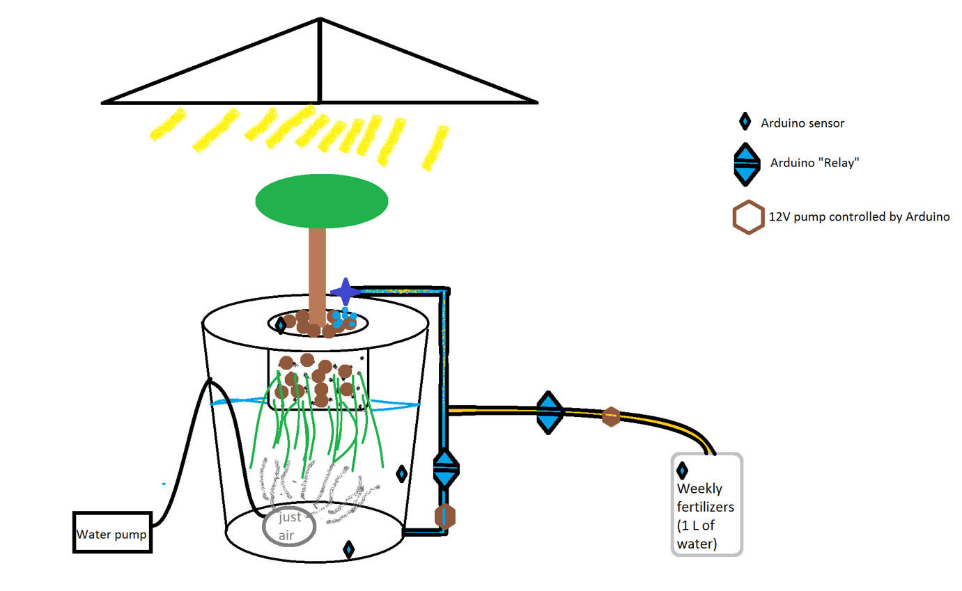Picture of Automated DWC Hydroponic System