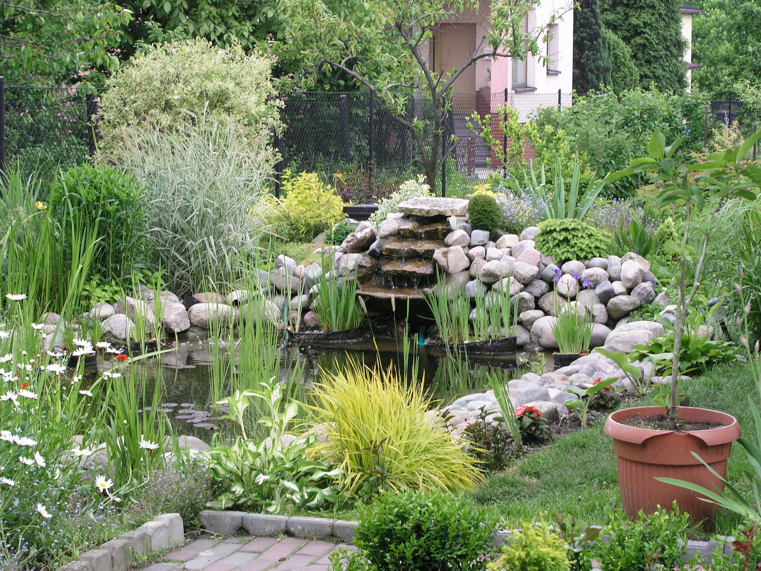 Picture of How to Build a Garden Pond