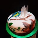 Hand Painted Bird Birthday Cake