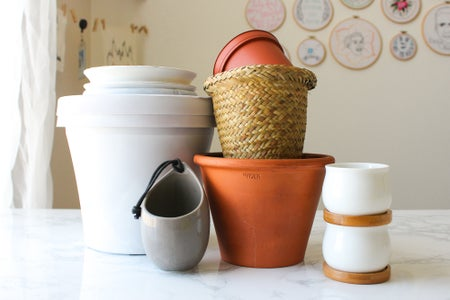 Choosing the Right Size Pot for Your Plant