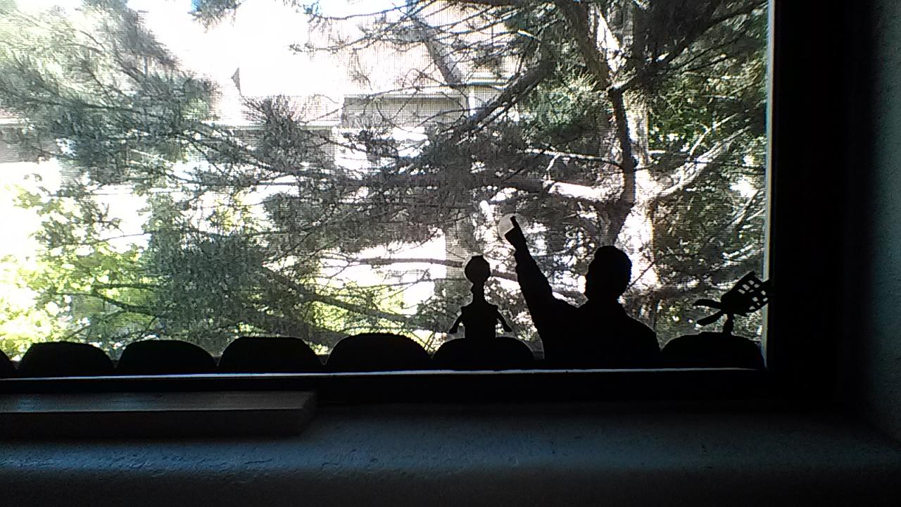 Picture of MST3k Tribute Window Shadow