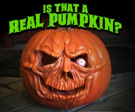 Is that a REAL pumpkin??? Yes, it is!