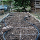 Square Foot Gardening Planting Guides