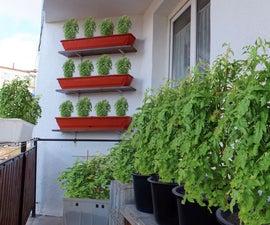 Starting a Balcony Garden