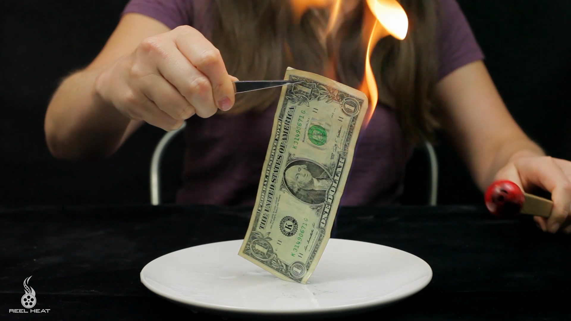 Picture of Fire Proof Dollar