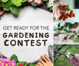 11 Ideas for Your Spring Garden