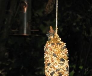 Pine Cone Squirrel/Bird Feeder