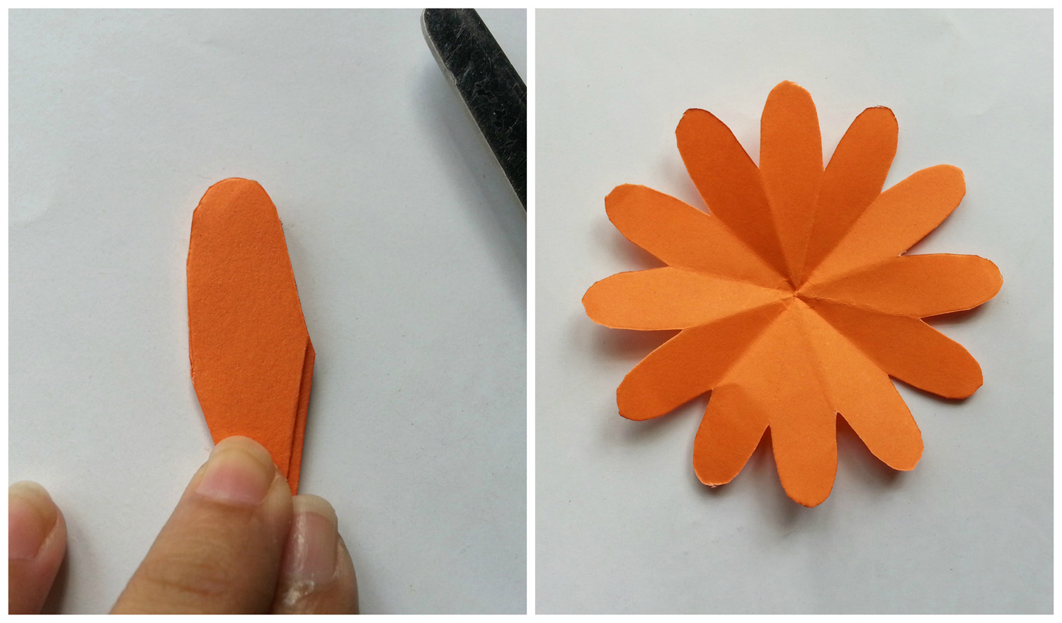 Picture of 12 Petals