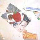 Carve a Adam's Apple Fridge Magnet