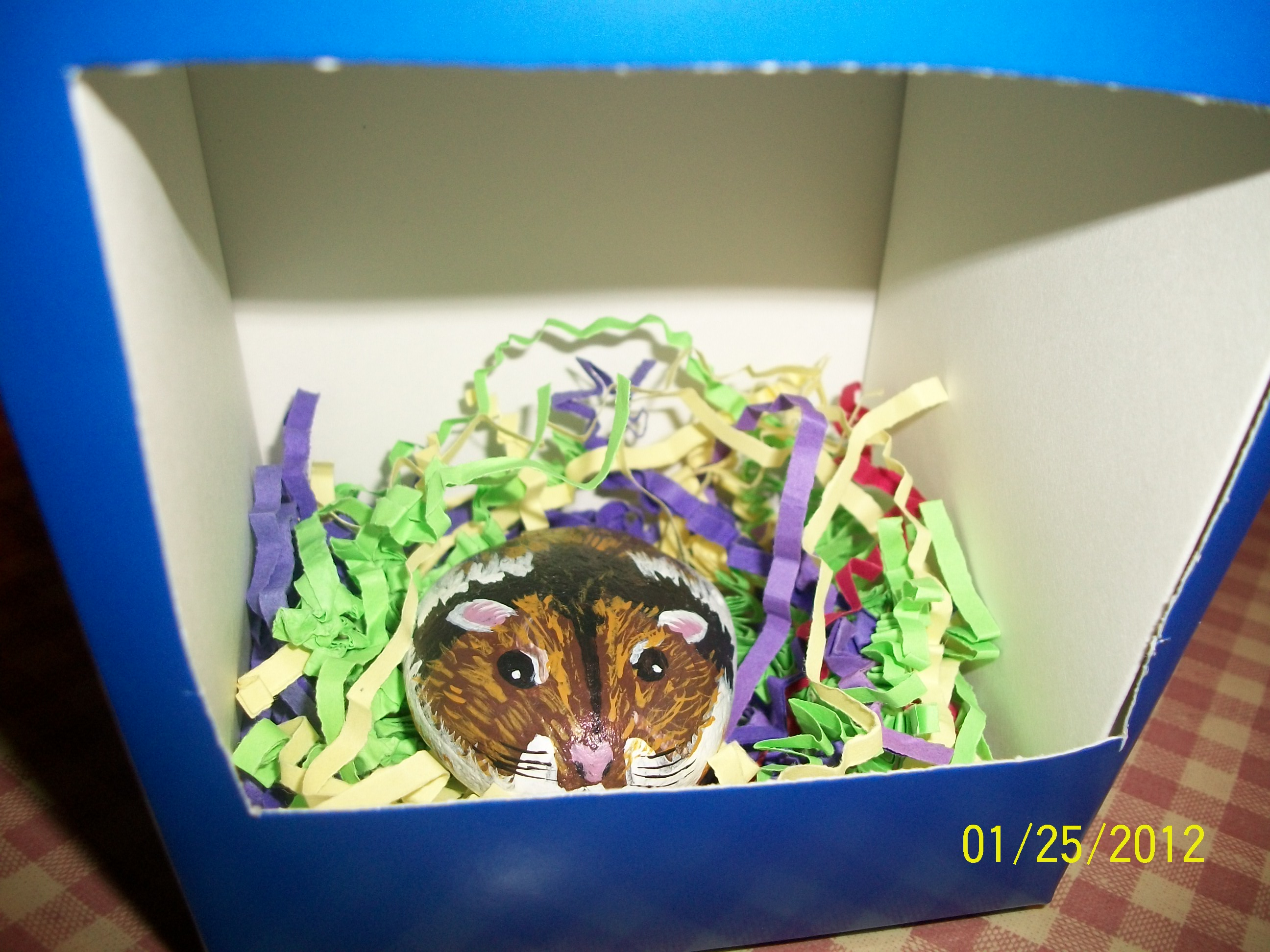 Picture of Painted Hamster Rock