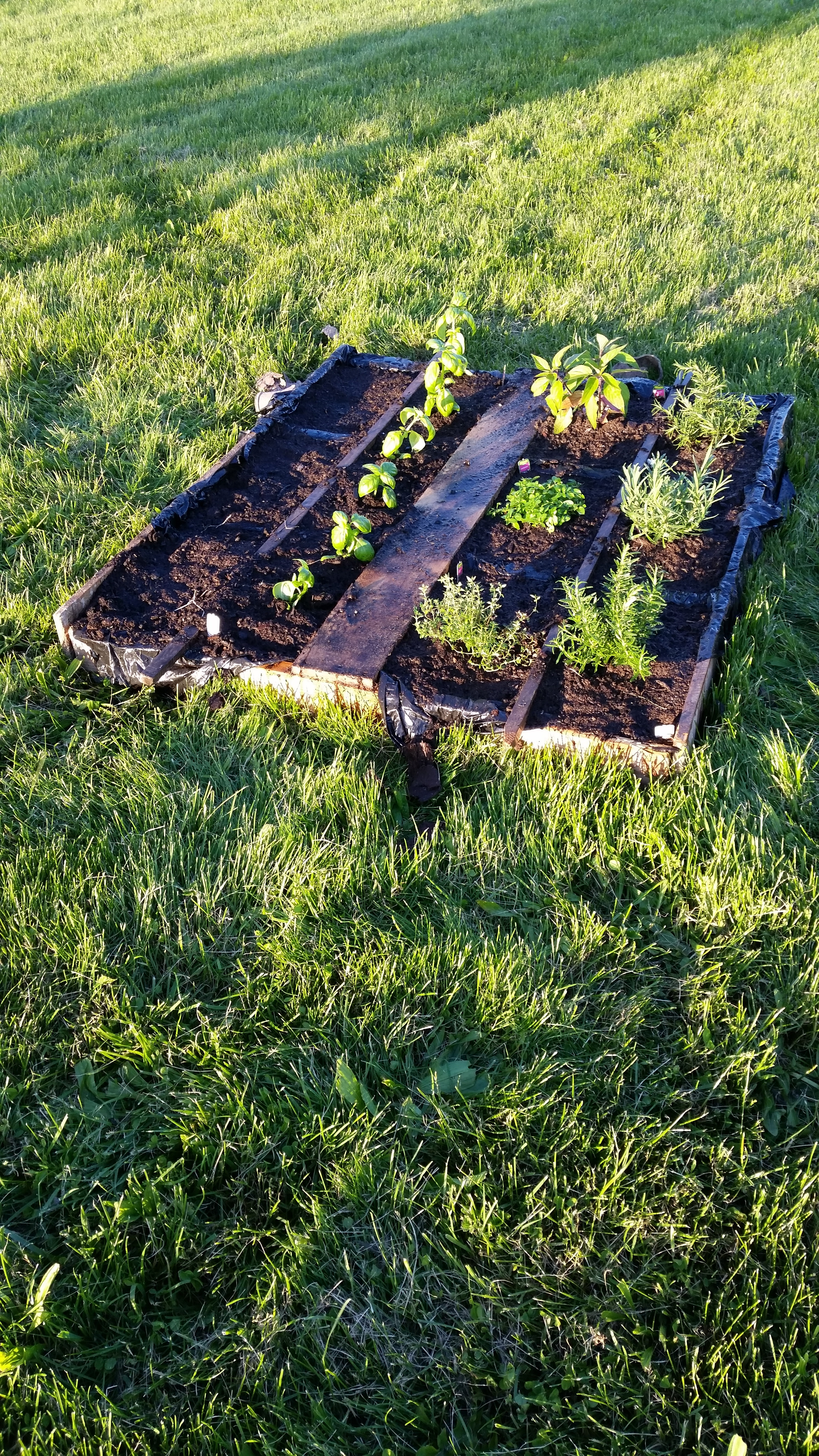 Picture of How to Make Your Own Pallet Garden