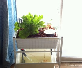 Indoor Mini Aquaponics System (IKEA-hack)