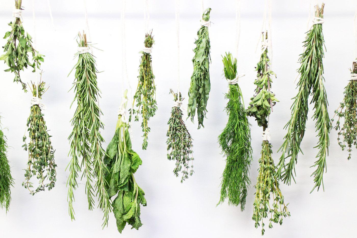 Air Drying: Herbs