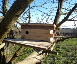 Nest Box for Little Owl - for 'Old World' Makers Only