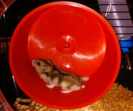 RunningHam Palace - Online Hamsters