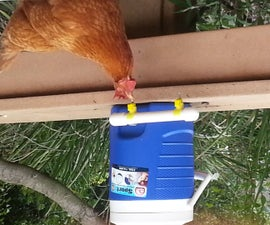 Chicken Waterer using cooler and electrical fittings