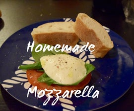 Delicious Homemade Mozzarella