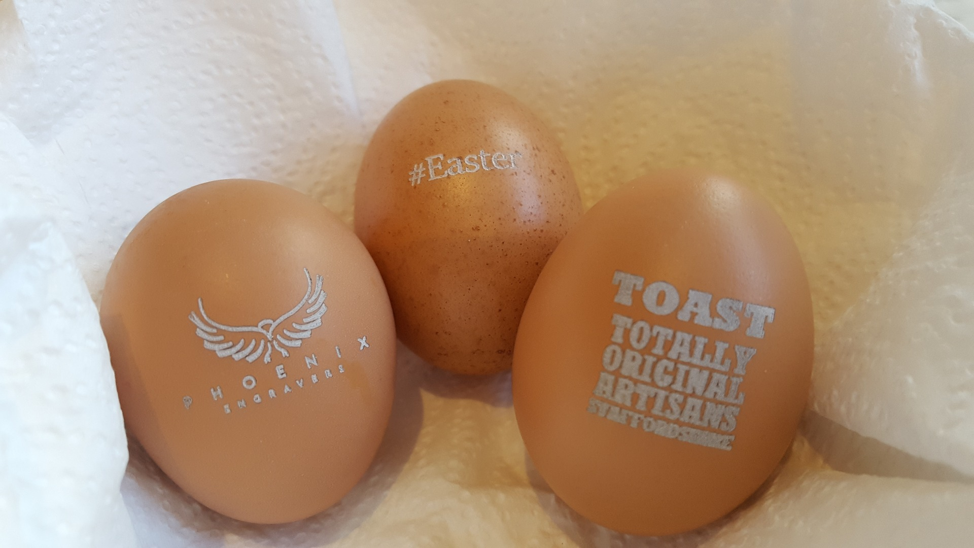 Picture of Displaying the Eggs.