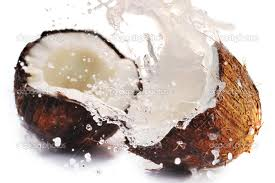 Consume an Entire Coconut: 9 Products - Zero Waste!