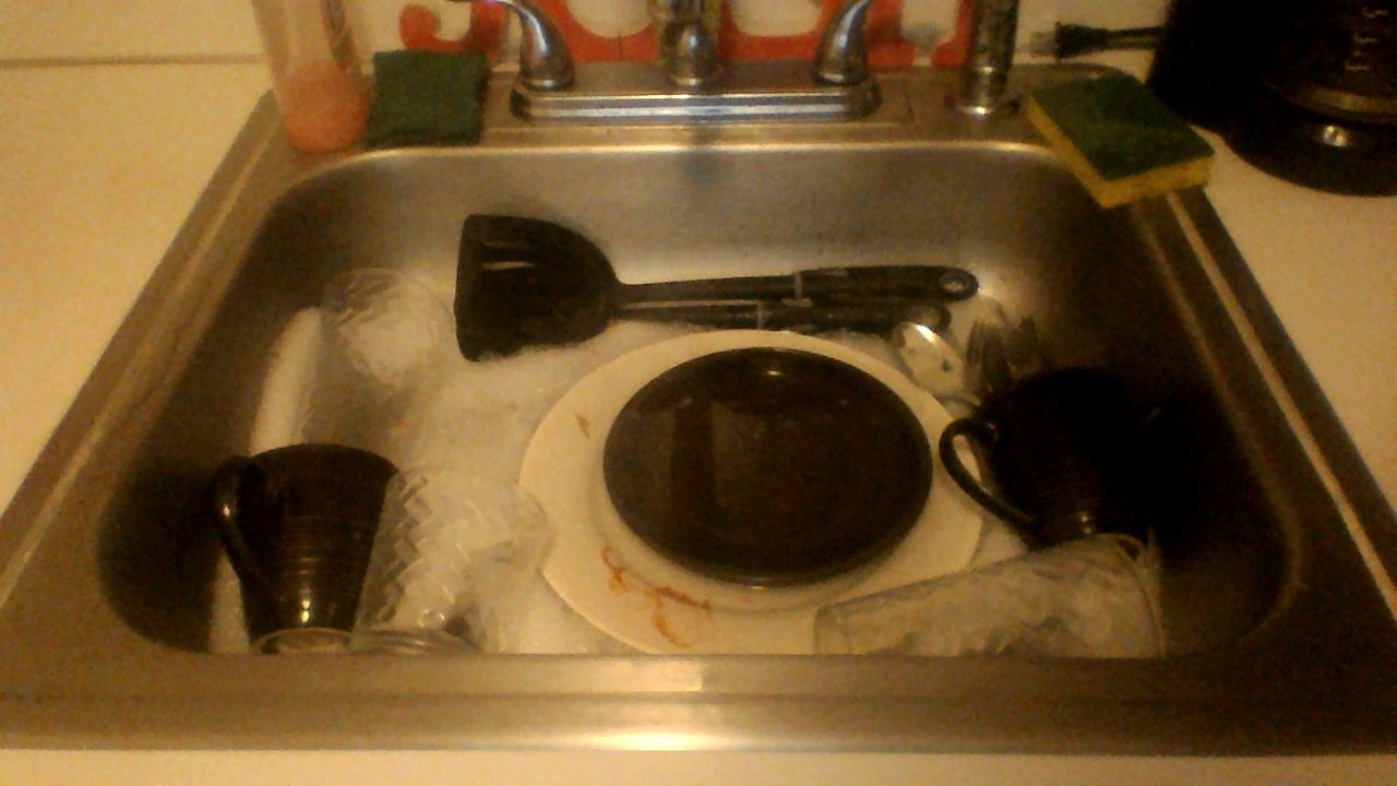 Picture of Loading the Sink