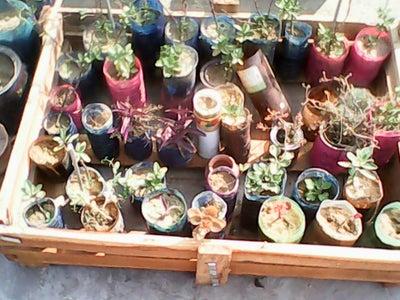 Finally Making Small Garden
