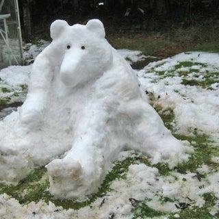 Bear01.jpg