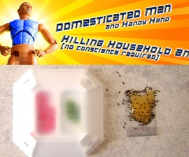 Kill Household Ants - Super Cheaply