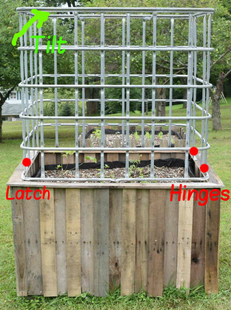Picture of UPGRADE: Protective Cage / Greenhouse