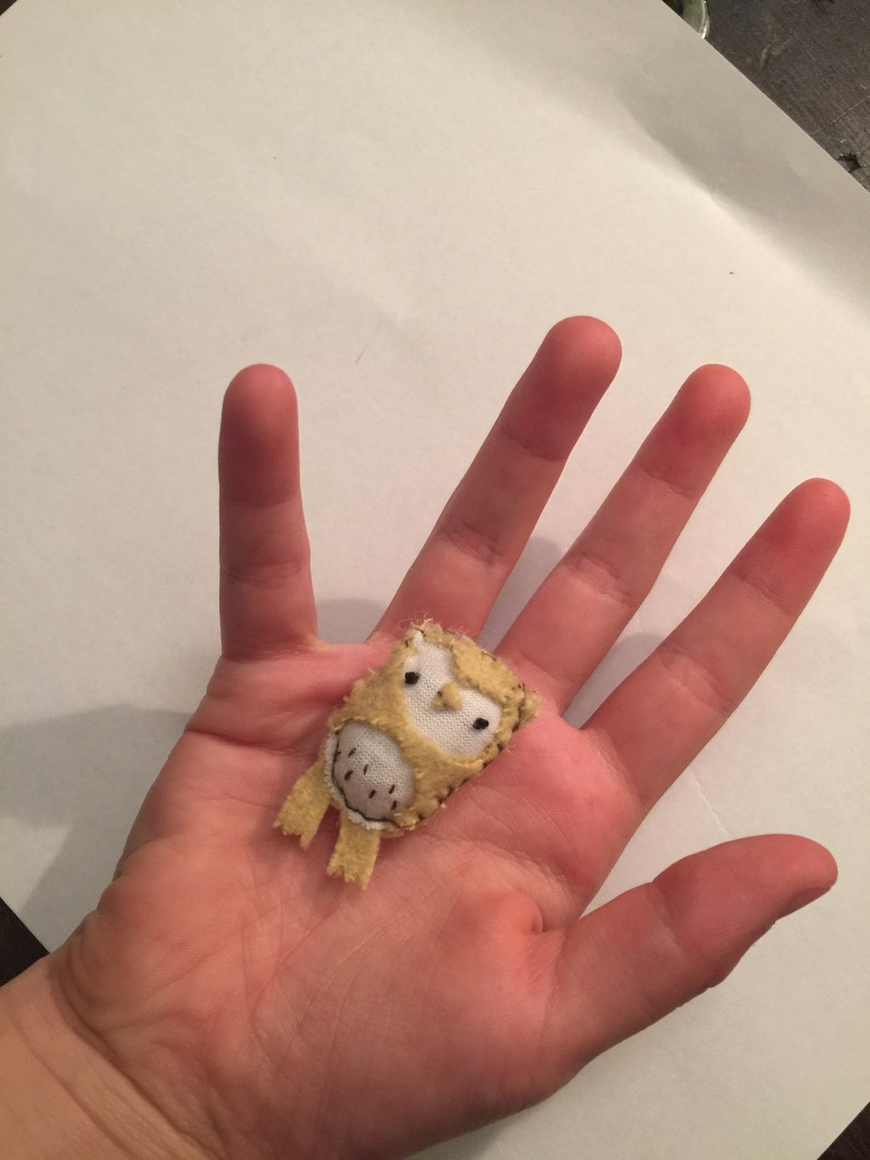 Picture of How to Make a Tiny Owl!