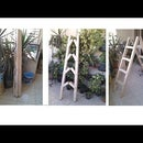 Foldable Cardboard Ladder