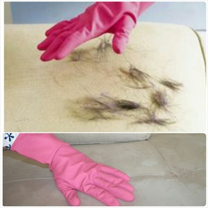 Pet Hair Removal Trick: Rid Your House of Pet Hair for Less Than $10. Cheap Life Hacks for Cleaning Up Dog and Cat Hair.