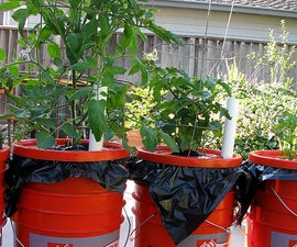 The Dearthbox: A low-cost, self-watering planter