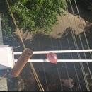 IOT Waterballoon Launcher