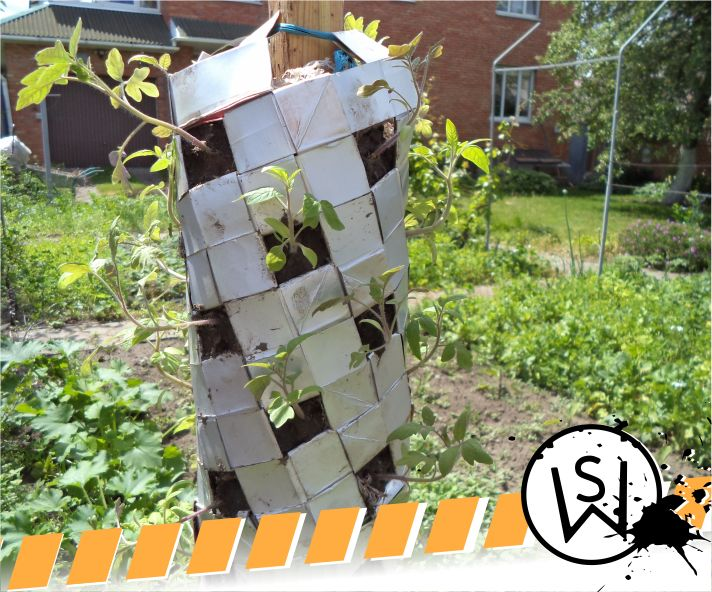 Picture of Vertical Gardening With Tetra Paks P2. Growing Stuff