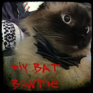 DIY Bat Bowtie