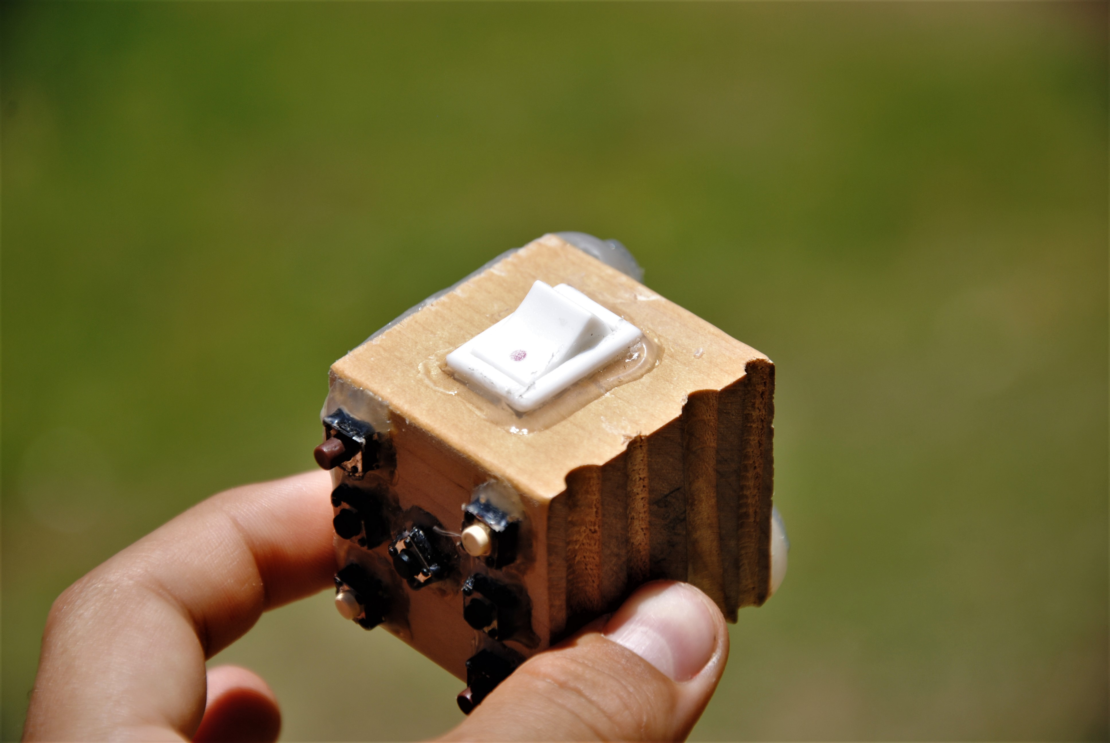 Picture of The Toggle Switch!