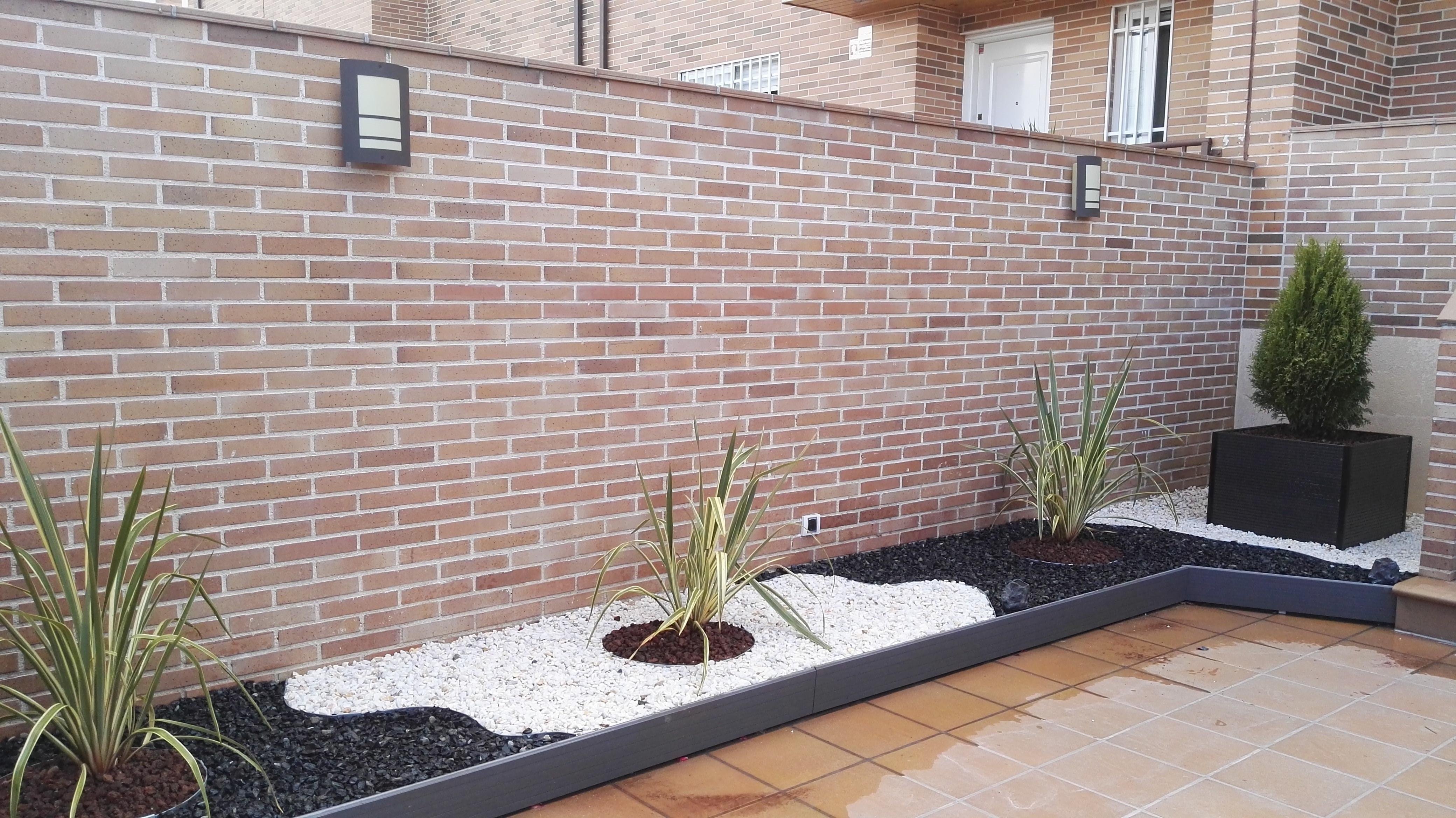 Picture of Modern Gravel Garden