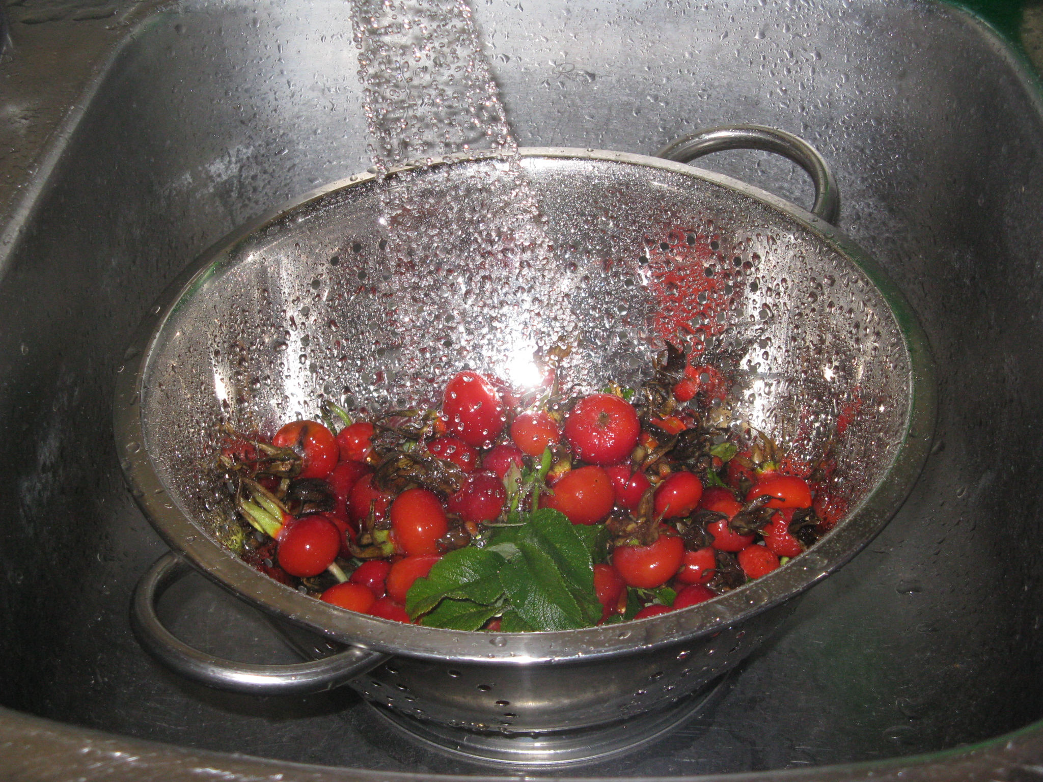 Picture of Cooking the Rose Hips