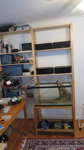 Get the Room, Shelving, Reinforced Stand Then the Tank!