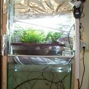 Hydroponics in basement.