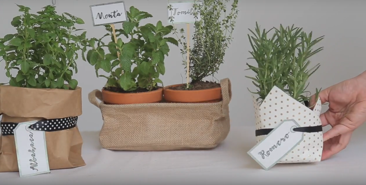 Picture of 3 Ways to Wrap Potted Plants