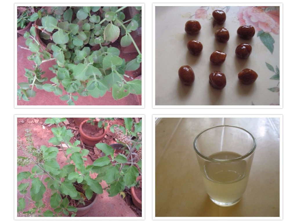 Picture of Sore Throat Lozenges and Decoction With Plectranthus Amboinicus Leaves